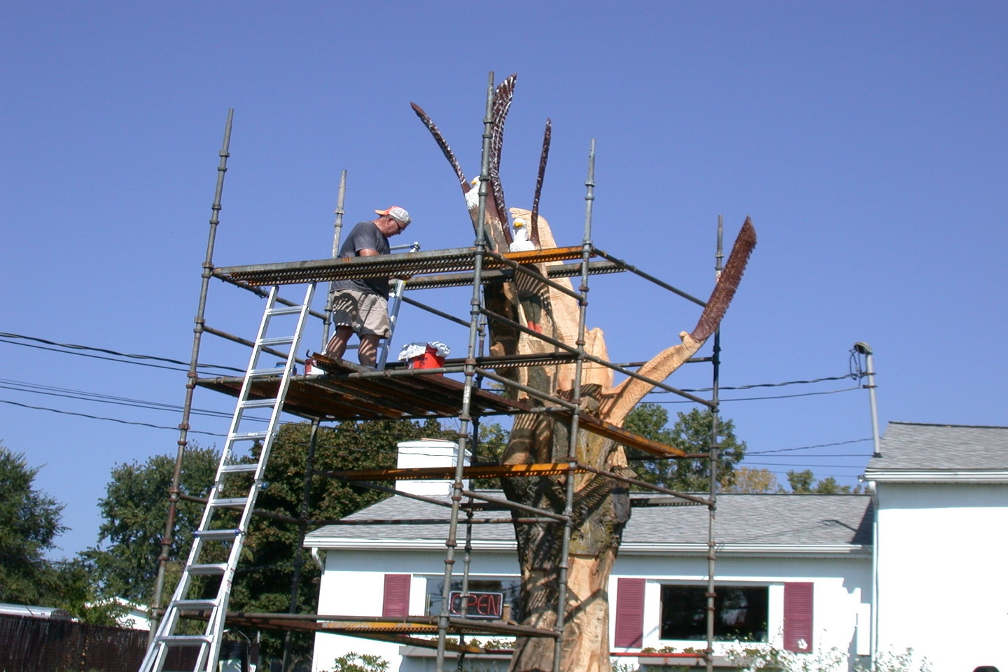 An old tree we had taken down is getting a facelift thanks to a local artisan!